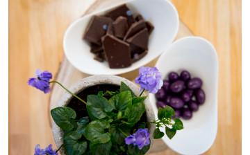 Bonbons et chocolats à la Violette