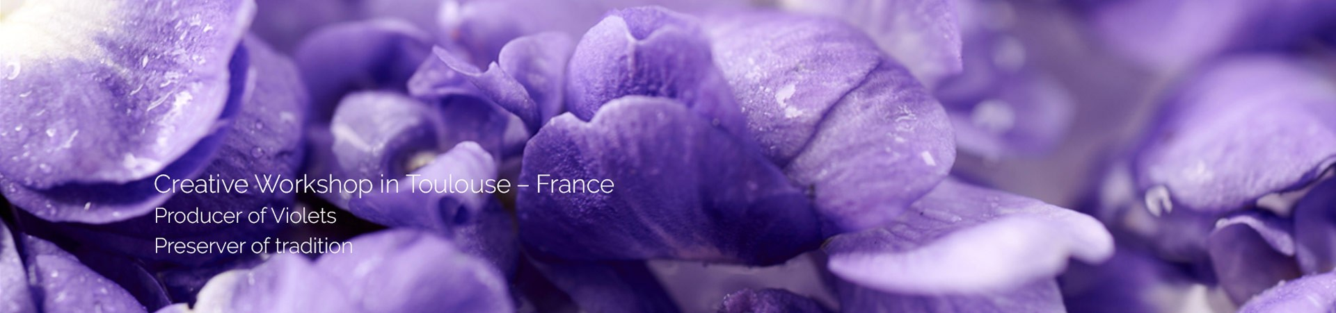 Creative Workshop in Toulouse–France Producer of Violets Preserver of tradition